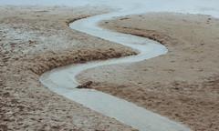 3018 (saul gm) Tags: mud dando lodo estuary ría trunk tronco agua water meander bend curva meandro río river nature outdoors wet curves lowtide bajamar asturias asturies españa spain boue madera wood