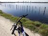 Cycle trail (Home Land & Sea) Tags: newzealand bicycle fence nz napier pointshoot sonycybershot mybike hawkesbay waterride hff westshore cycletrail fencedfriday homelandsea dschx100v
