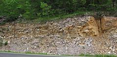 Baraboo Quartzite (upper Paleoproterozoic, ~1.7 Ga; Rt. 12 roadcut, South Range, Baraboo Ranges, Wisconsin, USA) 1 (James St. John) Tags: wisconsin range quartzite baraboo precambrian bluffview paleoproterozoic proterozoic