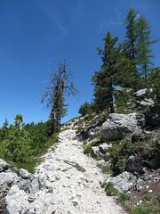 IMG_9443 (Bike and hiker) Tags: santa val alpen roda dolomites moos dolomiti badia croce dolomiten armentara dolomieten gadertal kreuzkofel darmentara alpenwiesen