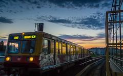 DSC02510 (Roland M_) Tags: railroad berlin train twilight sbahn twighlight