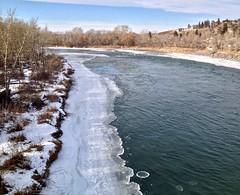 Ice circles - Bow River 2 (benlarhome) Tags: canada calgary alberta bowriver