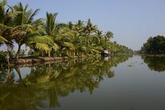 DSC_8895 (Tartarin2009 (travelling)) Tags: tartarin2009 nikon d600 travel kerala india backwaters landscape