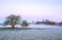 Frosty Dawn (jactoll) Tags: bidfordonavon warwickshire winter frost mist misty dawnmist dawn light landscape appicoftheweek sony a7ii zeiss 1635mmf4 jactoll