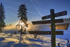 Viele Wege führen durch den Harz (uwe20) Tags: harz schnee niedersachsen deutschland wegweiser sonne baum oderteich