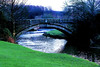 Pollock Park bridge (Fr Paul Hackett) Tags: pollock river grass bridge trees