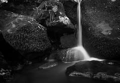 Cascada (M. Méndez) Tags: cadiz campo