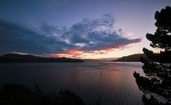Sunset. Otago Habour (PalmyLisa) Tags: otago harbour dunedin sunset water colour cloud summer views landscape
