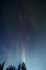 Phantom aurora (Chalicerae) Tags: night stars solar twilight north manitoba tokina oxygen bands aurora nightsky lightshow solarwind thompson 130am northernlights auroraborealis hydrogen photons june10 electrons protons chargedparticles geomagneticstorm polarlight excitation starrysky naturallightshow ionization nauticaltwilight canon60d lightemission auroraloval coronalmassejection magnetosphere solaractivity upperatmosphere thompsonmanitoba quietarcs sunspotcycle northof55 auroralarc interplanetarymagneticfield auroralzone manasanquarry magnetosphericplasma magneticmidnight activeaurora precipitatingparticles 55thlatitude