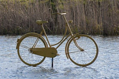 Cycling on Water (natures-pencil) Tags: lake water netherlands bike bicycle reeds cycling utrecht nederland celebrations ripples tourdefrance fiets 2015 griftpark paintedyellow