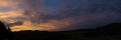 DSC_8041_stitch (prebianca) Tags: sunset suchlove country sãomarcos riograndedosul tree nature boulevard brazil