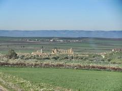 Vista with distant view of Roman ruins, Volubilis, Morocco (Paul McClure DC) Tags: morocco almaghrib fèsmeknèsregion volubilis jan2017 roman architecture historic scenery