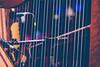 """XWU16_161224_01 (c) Wolfgang Pfleger-3960 (wolfgangp_vienna) Tags: harfonie stubenmusik volksmusik ö3 hitradio weihnachtswunder """"weihnachtswunder"""" christmastime innsbruck tirol tyrol austria österreich weihnachten mariatheresienstrase anna säule event radiostation annasäule """"serious request"""" hitradioö3 seriousrequest ö3weihnachtswunder"""