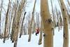 aa-2437 (reid.neureiter) Tags: skiing vail colorado mountains snow snowskiing alpineskiing sport sports wintersports