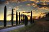 Filari infiniti (Guido Pezzatini) Tags: tramonto calma cipressi crepuscolo valdorcia toscana siena italy silenzio calore campagna