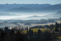 Southern Bavaria (ruediger59) Tags: mountains nature fog bavaria blue green chapel trees landscape