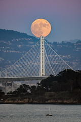 Supermoon (alittlegordie) Tags: fullmoon moon supermoon bayarea baybridge bridge alignment landscape nature moonrise