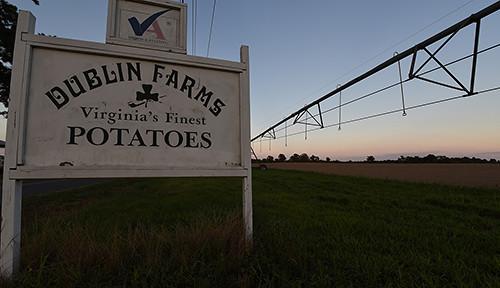 Dublin Farms
