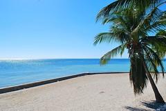 Key West (Florida) Trip 2016 0053Rif 4x6 (edgarandron - Busy!) Tags: florida keys floridakeys keywest higgsbeach coth5