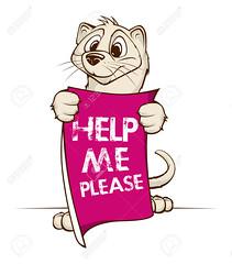 Cute Mink (lêtiến2) Tags: mammal tail sign fur creature symbol sneaky skunk label hunter emblem cute adorable banner domestic nature pet endangeredspecies mascot cartoon animal weasel outlined mink help please