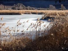 Hiver au lac de la corne (JMVerco) Tags: hiver winter inverno glace ice ghiaccio paysage landscape paesaggio suisse switzerland swizzera
