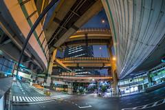 箱崎JCT (mikemikecat) Tags: road city japan night landscape ed nightscape sony cityscapes fisheye nightview 12mm 夜景 f28 ncs samyang as a7r 箱崎jct mikemikeca 首都高速6號向島線