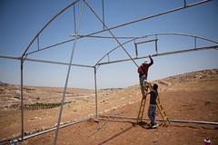 Hard at Work in Palestine