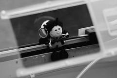 Glcksbringer Marie (FlyingFocus) Tags: black marie cockpit flugzeug flugplatz marienkfer fliegen glcksbringer segelfliegen haube schwarzweis farblos segelflugplatz