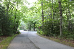 Setting from the Road (Stuart Borrett) Tags: camping usa forest nc outdoor pisgahnationalforest 2015 davidsonrivercampground