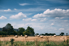 198/365 Hay (marcwiegelmann) Tags: summer field clouds canon vintage 50mm feld wolken 100mm 365 hay everyday fullframe dslr ernte aphotoaday heuballen ladenburg spiegelreflex 365fotos hayball 365project fotoprojekt 365photos jedentag vsco 5dmkii vscopreset