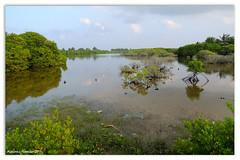 lake from Kulhudhuffushi (hassaan 2015) Tags: dhaal maldives mohamed haa dhivehi hassaan raajje kulhudhuffushi