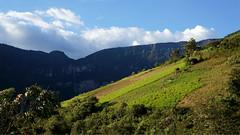 Cataratas de Gocta - Amazonas (jimmynilton) Tags: cataratas de gocta amazonas bongara peru 3ra mas alta nex5n sony nex 5n pastizal choza montaña monte