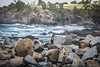 Rocky (Long Road Photography (formerly Aff)) Tags: 365the2017edition 3652017 day8365 8jan17 rocky break wall exercise landscape rocks cliff d7200 70300mm vrii nikon narooma nsw eurobodalla