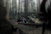15 (photoshepherd) Tags: 365 shortfilm makeup forest neo scifi future apocalypse postwar fight