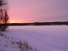 La vie en rose (jondewi52) Tags: colour colours clouds frozen ice nature outdoors outdoor river sunrise snow morning