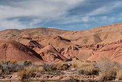 Vallée des roses (Pascale Jaquet & Olivier Noaillon) Tags: montagnes paysage pdf3 désert végétation oasis soussmassadraâ maroc ma