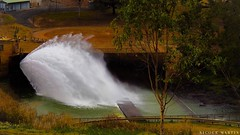 """tinaroo-dam-wall_30084472001_o • <a style=""""font-size:0.8em;"""" href=""""http://www.flickr.com/photos/146187037@N03/31830022922/"""" target=""""_blank"""">View on Flickr</a>"""