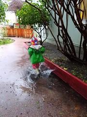 Running through the puddle (quinn.anya) Tags: sam preschooler rain puddle rainboots splashing