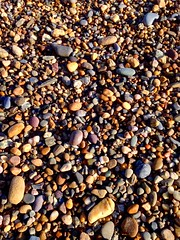 Which one to choose? (JulieK (ready for another 365 challenge)) Tags: stones pebbles beach wexford grangebeach fethardonsea iphone5 117picturesin2017
