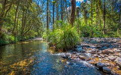755 Summervilles Road, Thora, Bellingen NSW