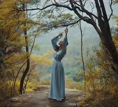 A woodland tale (Deltalex.) Tags: woman girl forest woodland dance sydney bluemountains leura forestfairy woodlandfairy nikond600 sigma85mm deltalex alexstoddard alexbenetel emmasabjan