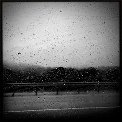 Gloomy Start To June... (Tom Frundle) Tags: abstract rain weather june gloomy rainyday nashville raindrops 2015 middletennessee iphone6 iphoneonly hipstamatic blackeyssupergrainfilm wattslens