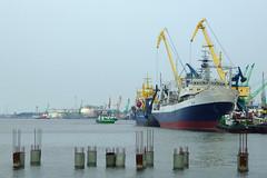 Port w Kłajpedzie | Klaipeda port