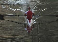 161/365. ROWING (geoveni) Tags: sports project river greece rowing 365 athlete rower piraeus 2015 faliro kifissos