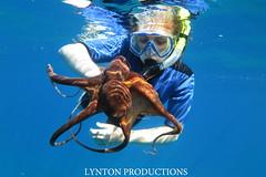 tako on snorkel tour (Aaron Lynton) Tags: canon hawaii underwater snorkel dive diving maui tako g1x lyntonproductions