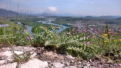 Rozafa Castle -  Shkoder 0976 (Chris Belsten) Tags: castle albania archeaology shkoder rozafa illyrian