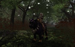 On The Hunt (DaniGraphix Resident) Tags: elf fantasy secondlife panther hausofgraphelle