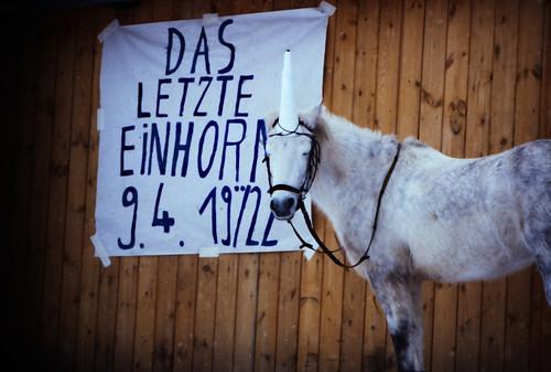 "Filmwerbe-Dia ""Das letzte Einhorn"" (07) • <a style=""font-size:0.8em;"" href=""http://www.flickr.com/photos/69570948@N04/19822860665/"" target=""_blank"">View on Flickr</a>"