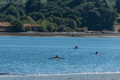 1507_Summer_Camp_0011_v2 (JPetram) Tags: rowing summercamp 2015 vashoncrew vijc