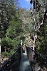 Piles Creek, Great North Walk (cathm2) Tags: travel nature walking outdoors hiking australia nsw centralcoast greatnorthwalk